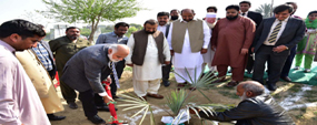 PU tree plantation drive